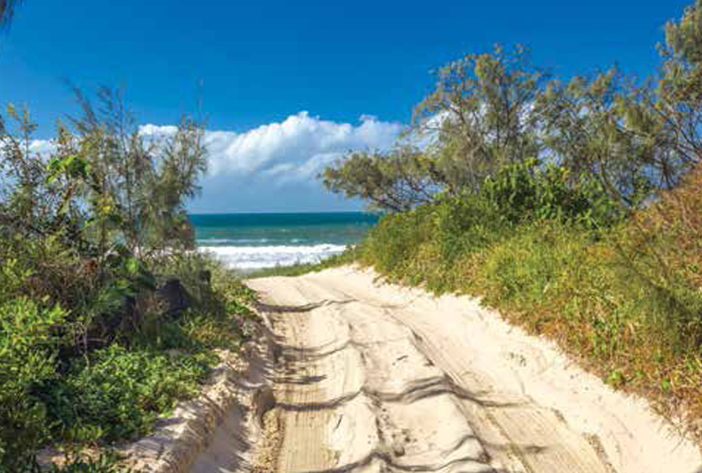 Well driven beach trail leading to ocean with bush on each side