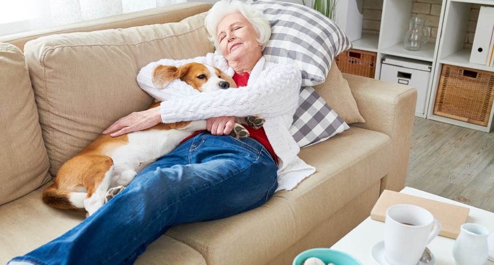 Senior woman relaxes comfortably on coach with beagle dog in living room