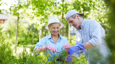 Front view portrait of contemporary senior couple gardening in sunlight, copy space