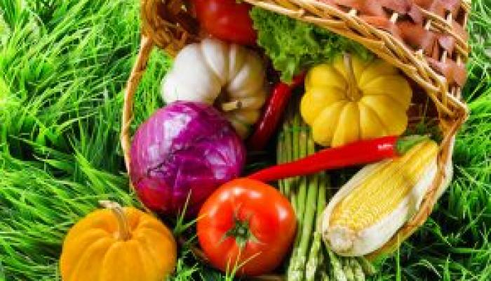 Basket of vegitables