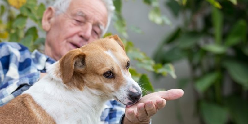 Senior with his dog